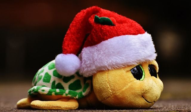 christmas-1909831_640.jpg